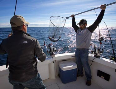 captain-kris-davis-netting-catch-fish-for-client